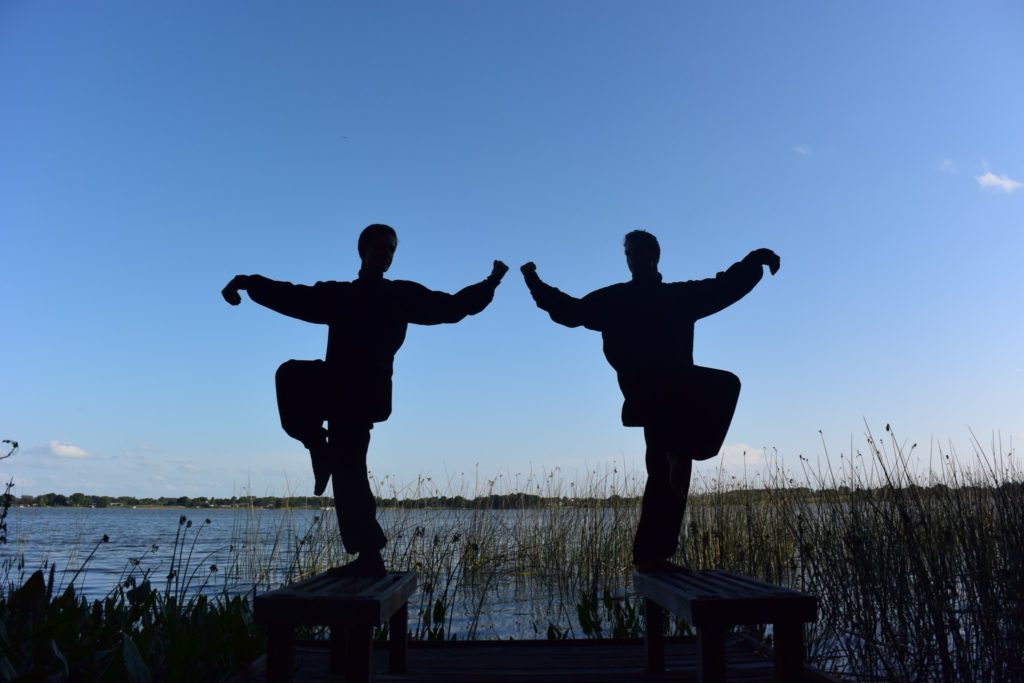 History of Martial Arts ~ Kung Fu ~ Tai Chi